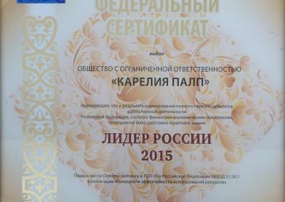 diploma 1 for press 1_2